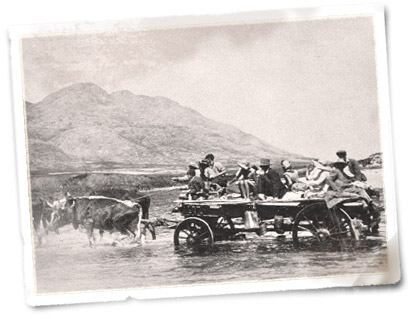 Oxen pulling a wagon with its human cargo to the other side of the Palmiet River